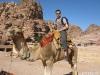 Camel Riding, Petra, Jordan