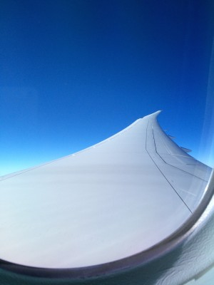787WindowView1